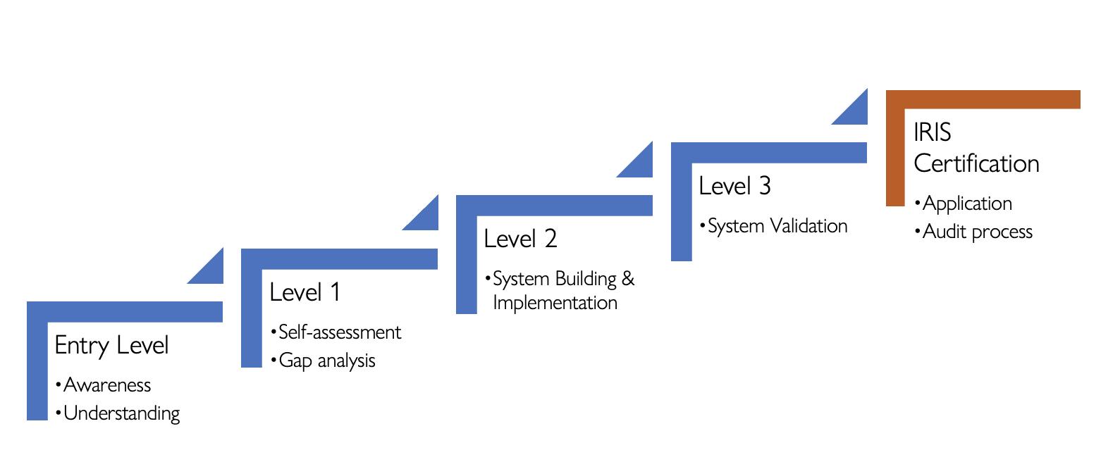 IRIS Capacity Building Programme Flow